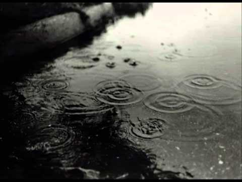 nature sounds - Rain calm relax