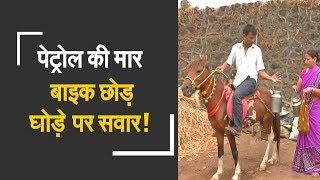Milkman delivers milk on horse to beat petrol price hike | पेट्रोल हुआ महंगा तो खरीद लिया घोड़ा - ZEENEWS