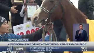 Определился победитель республиканского турнира «Алтын тұлпар»