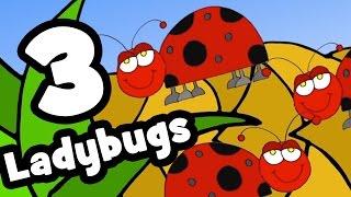 The Ladybug Song, English Nursery Songs, MapleLeaf