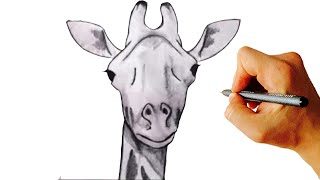 how to draw a giraffe very simple step by step drawing for kids youtube