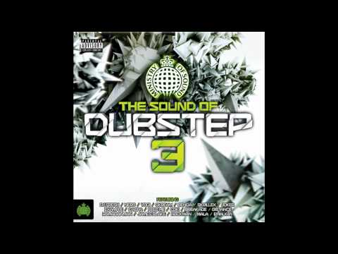 Satisfaction (J. Rabbit Remix) - Benny Benassi Presents The Biz (MOS The Sound Of Dubstep 3)