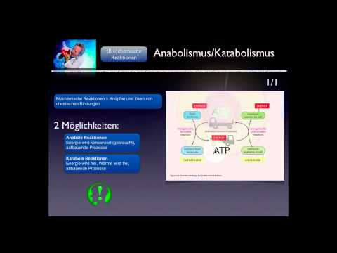 Basiskurs Biochemie/Chemie: Anabolismus/Katabolismus Teil 6/10