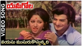 Yamagola Movie Songs - Vayasu Musuru Kostunnadi Song - NTR - Jayapradha - RAJSHRITELUGU