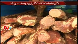 Police Search Operation Continue for Red Sandalwood Smugglers in Kadapa District || NTV - NTVTELUGUHD