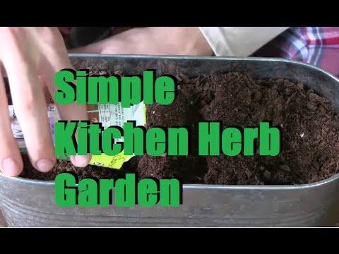 Planting a Simple Windowsill Herb Garden