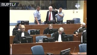 RAW: Former general Mladic removed from courtroom after outburst against judges - RUSSIATODAY
