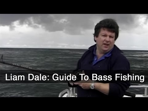 Liam Dale: Guide To Bass Fishing