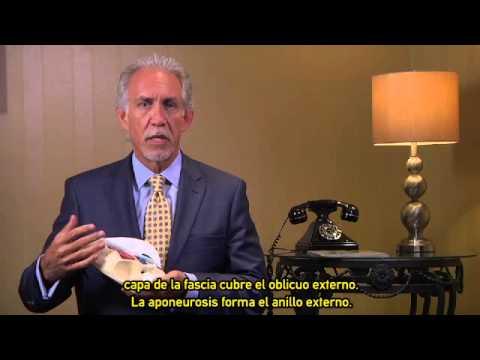 Revisión de Anatomía para Reparación de Hernia Inguinal con Dispositivo de Malla ULTRAPRO™