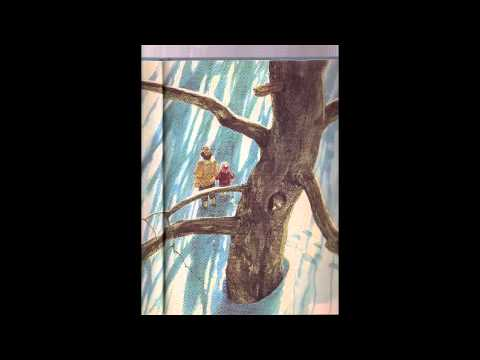 Owl Moon Read Aloud