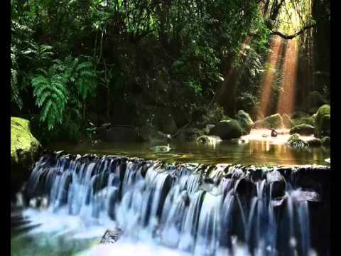 To Clear the Mind (Bamboo Flute & Nature Sounds)