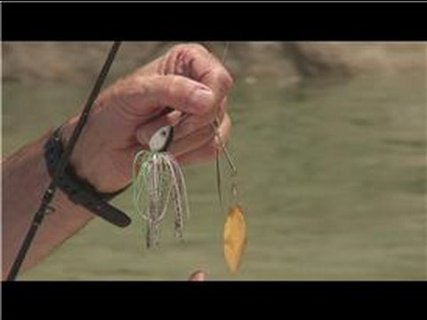 Fishing Lures & Baits How to Work a Spinner Bait