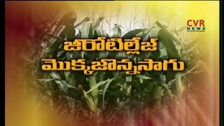 Experts Suggestions On Zero Tillage Farming | CVR News - CVRNEWSOFFICIAL