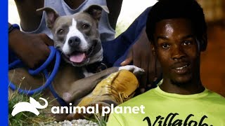 Spencer Has Turned His Life Around And Made His First Rescue! | Pit Bulls & Parolees - ANIMALPLANETTV