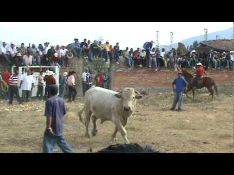 La Labor 2010 - Jaripeo TERCER TORO CABRON - Enero 1, 2009 - ZAMORA MICHOACAN MEXICO