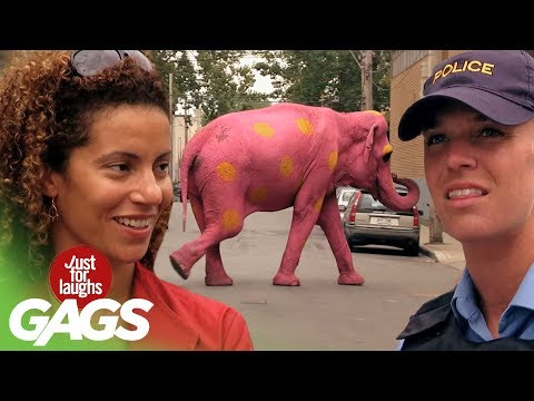 Best of Just For Laughs Gags - Most Crazy Complex Pranks