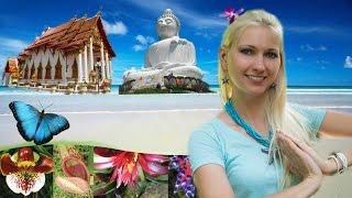 Обзорная экскурсия по Пхукету, Большой Будда, Ботанический сад Пхукет