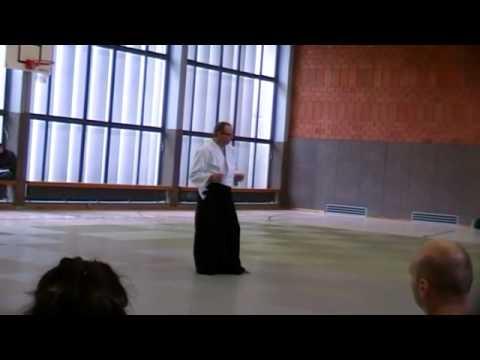 Stage Aikido Tendo Ryu Bad Sackingen 2010 Jos Van Roy v2