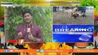 కృష్ణా జిల్లా లో విచ్చలవిడిగా కోడిపందాలు, కోర్టు ఆదేశాలను లెక్కచేయని పందెం రాయుళ్లు | Sankranti 2019 - INEWS