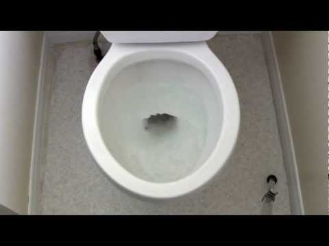 3D ASMR Toilet Swirly - Binaural Recording