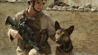 فيلم ماكس.. مغامرة عائلية بطلها كلب