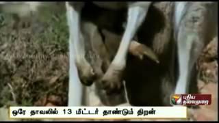 Fascinating Facts 03-09-2014 Puthiya Thalaimurai Tv Show