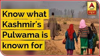 Know What Kashmir's Pulwama Is Known For | ABP News - ABPNEWSTV