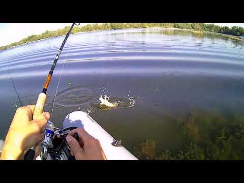 28 канал рыбалка краснодарский