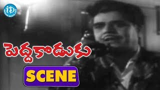 Pedda Koduku Movie Scenes - Soban Babu Mocking Nagabhushanam's Girlfriend || Kanchana - IDREAMMOVIES