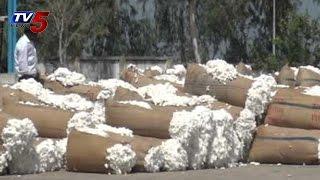 Cotton Farmers Agitations at Enumamula Market Yard in Warangal : TV5 News - TV5NEWSCHANNEL