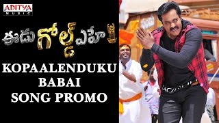 Kopaalenduku Babai Song Promo | Eedu Gold Ehe Songs | Sunil,Sushma,Richa,Saagar Mahathi - ADITYAMUSIC