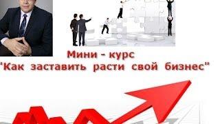 Помощь бизнесу-консультации