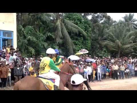 Pacuan kuda pariaman 2 nov 2014