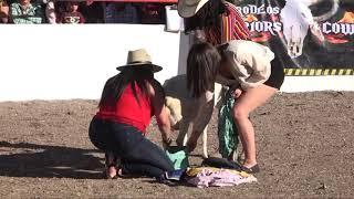 Jaripeos y rodeos en El Tepetate (Loreto, Zacatecas)