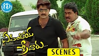Evandoi Srivaru Movie Comedy Scenes || Sunil, Srikanth Try to Imress Nikita Thukral - IDREAMMOVIES