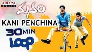 Kani Penchina Ma Ammake ★ 30 Mins Loop ★ Manam Movie || Nagarjuna, Naga Chaitanya,Samantha - ADITYAMUSIC
