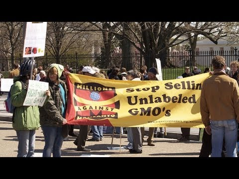 Wikileaks Cables Reveal State Dept. Promoting GMOs Abroad