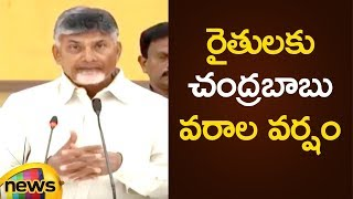 CM Chandrababu Naidu Announces Special Schemes In AP | AP Political Updates |Mango News - MANGONEWS