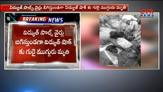Farmers dies of Shock from Electric Pole | Mancherial | CVR News - CVRNEWSOFFICIAL