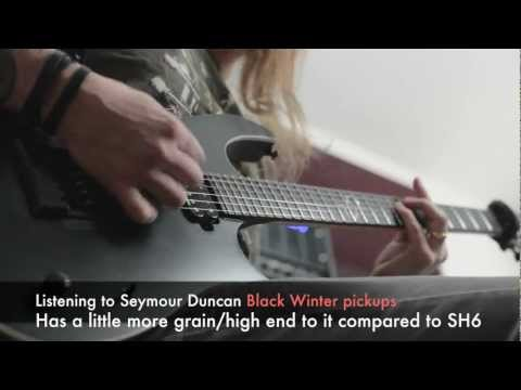 Seymour Duncan Black Winter pickups