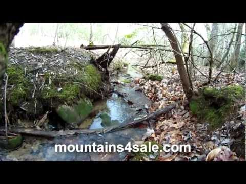 109.6± Acres NC Blue Ridge Parkway - Wilkes Co NC - SOLD!!