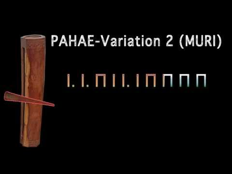 PAHAE Variation 2 (MURI) with tabs
