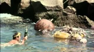 34 Flipper und die Mine