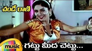 Chandi Rani Telugu Movie Songs | Gattu Meeda Chettu Video Song | Suman | Kavita | Mango Music - MANGOMUSIC