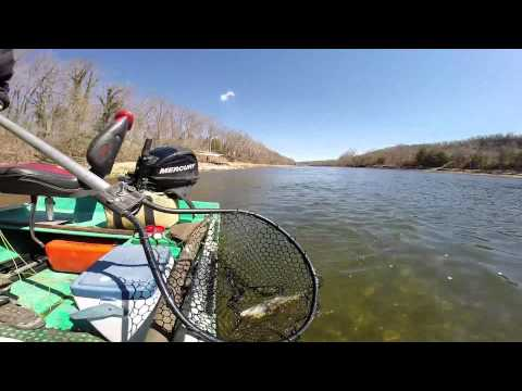 Gaston's Resort Fly Fishing With Frank Saksa on the White River