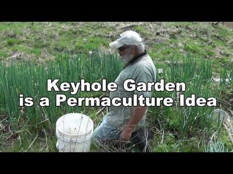 Highly Productive Permaculture Keyhole Garden Bed