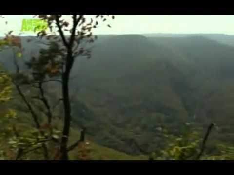 THE LAST LEOPARD (2008) part 4 of 5  critically endangered Amur Leopard