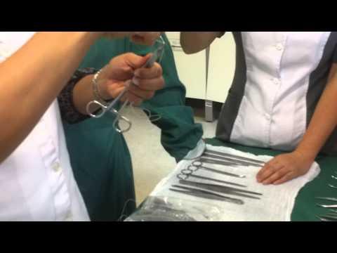 Montaje de aguja sutura.