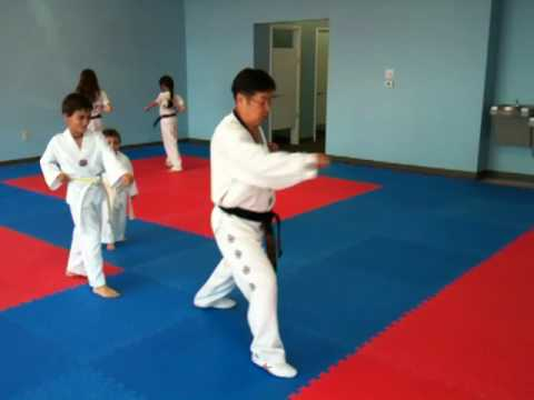Tiger Form 1 Tae Kwon Do