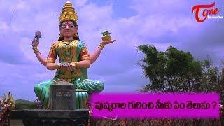Know about Pushkaram / Purshkaralu | Godavari Pushkaralu 2015 - TELUGUONE